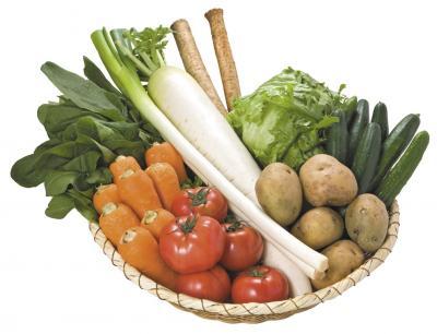 岩手の野菜 岩手の野菜 岩手の野菜は、きれいな空気と水、そして元気な土によって育まれ、昼と夜の温